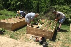 Planting-640x478